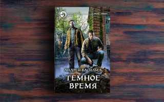 Темное время – Андрей Васильев