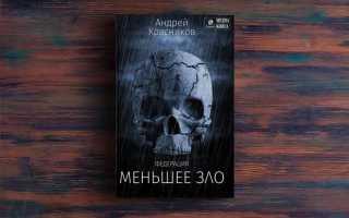 Федерация. Меньшее зло – Андрей Красников