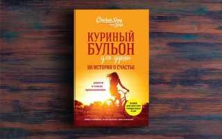 Куриный бульон для души. 101 история о счастье