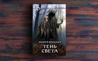 Тень света – Андрей Васильев