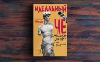 Идеальный Че. Интуиция и новые беспринцЫпные истории – Александр Цыпкин